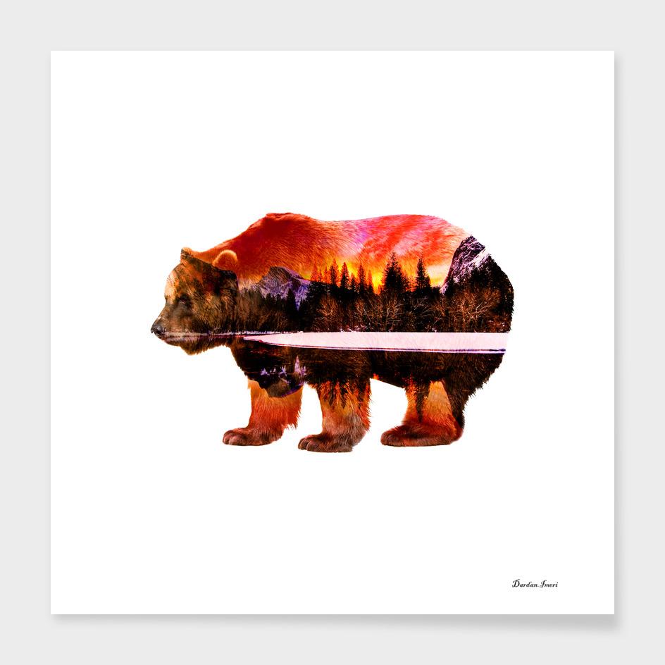 Bear Lands