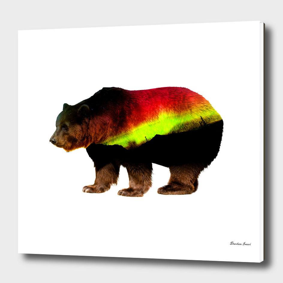 German Bear