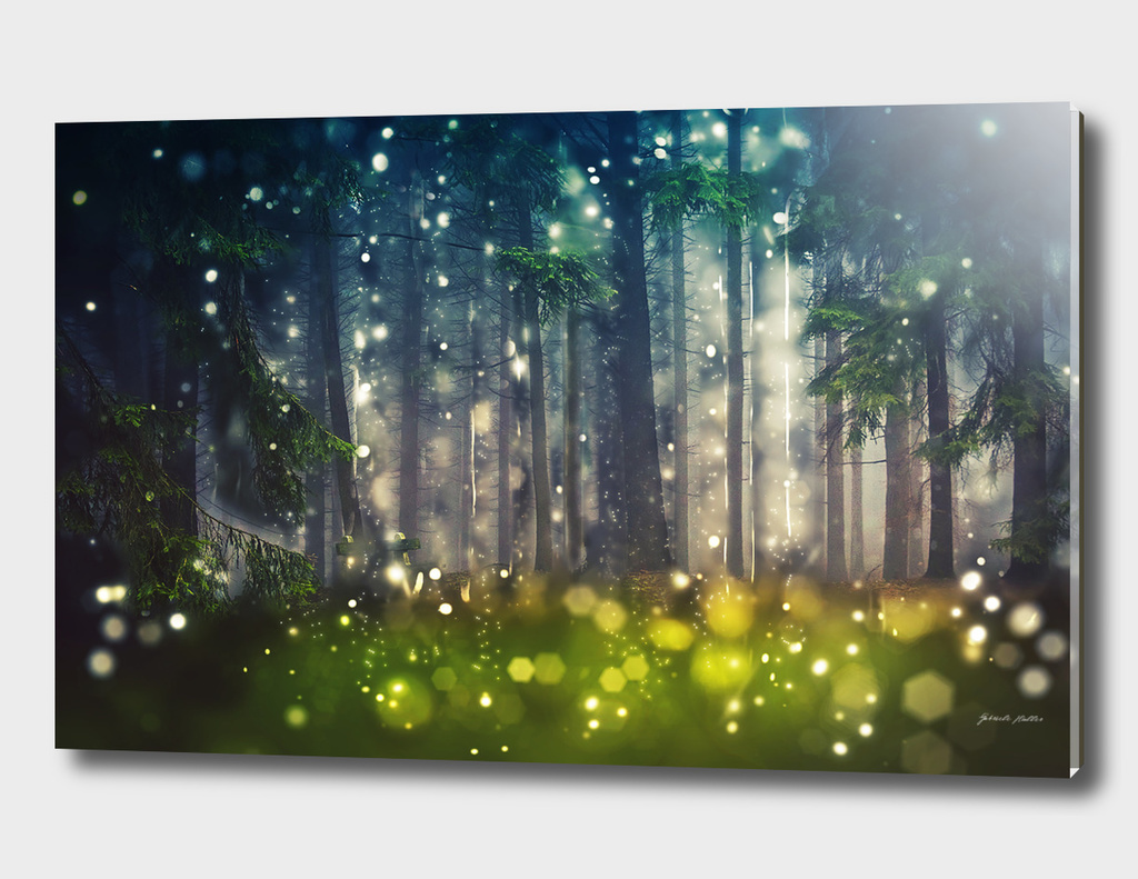 Mystical Forrest Trees -  Wood Glade