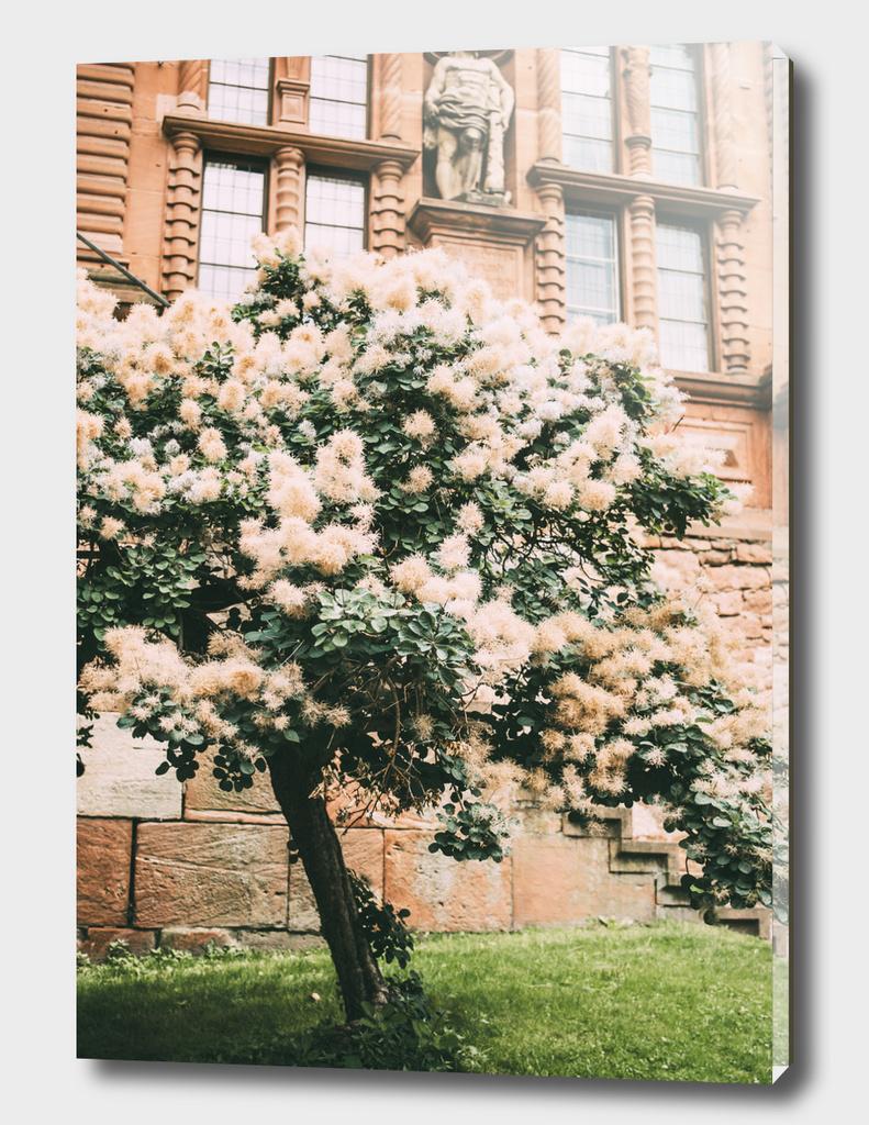 Fluffy Tree