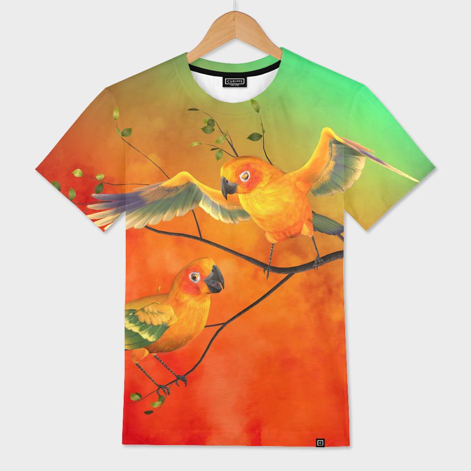 Parrots Sun Conures