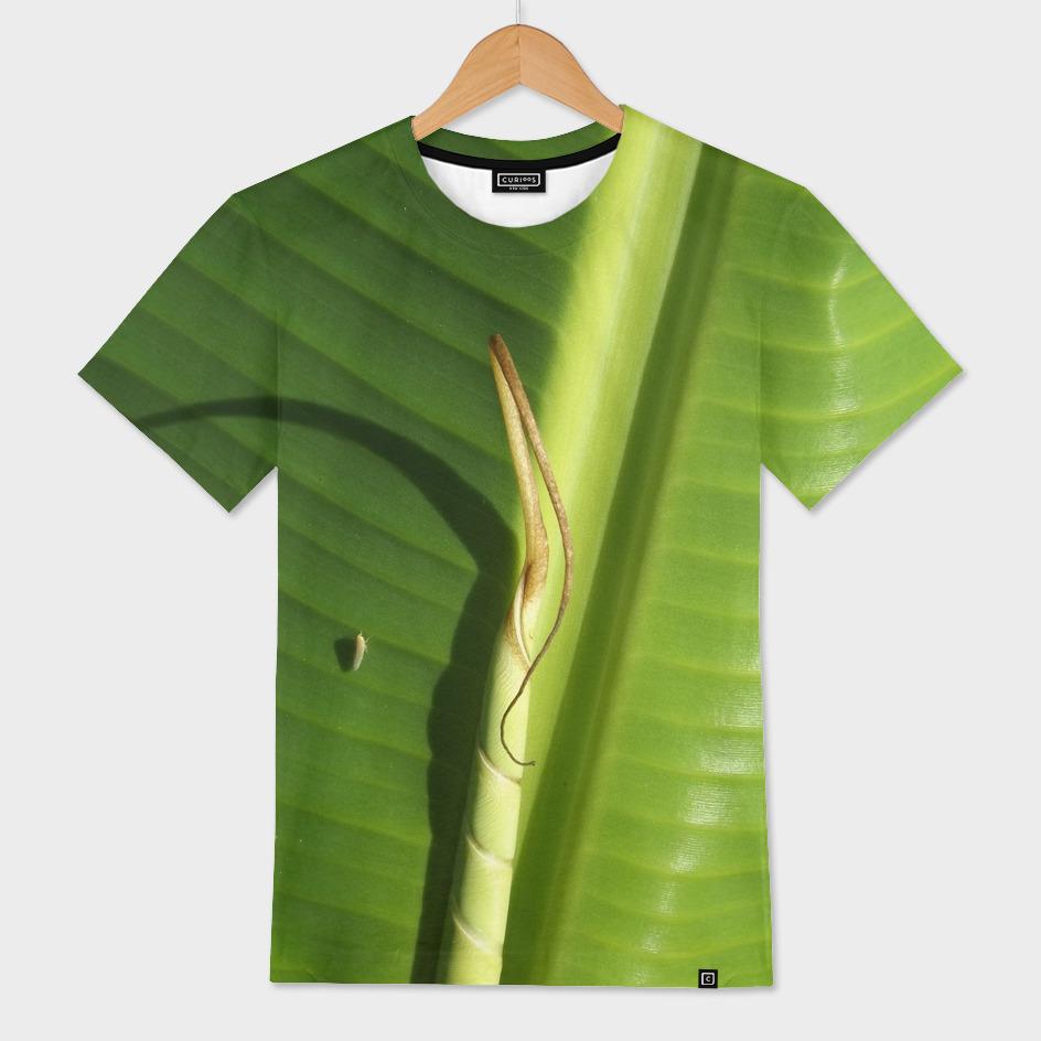 Bananis 1