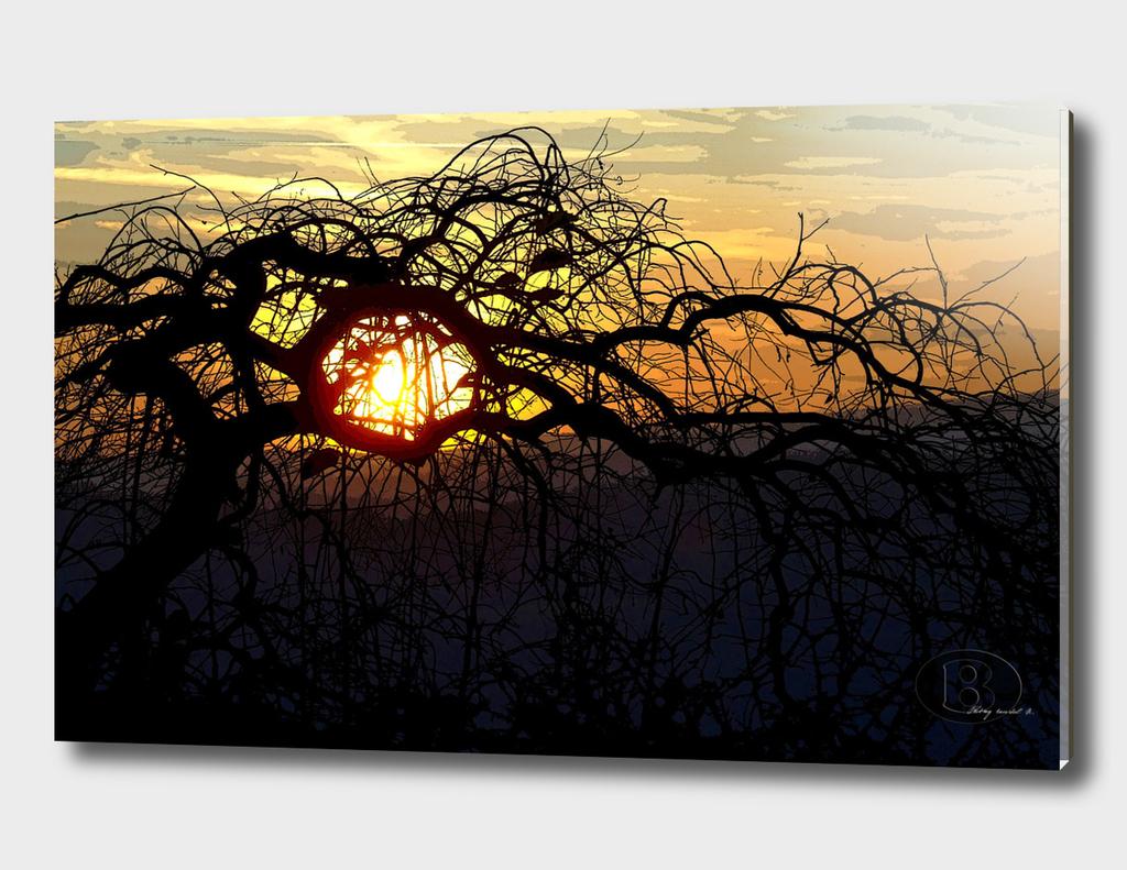 Sunset on Banstol B 2006_1125Fuji0027