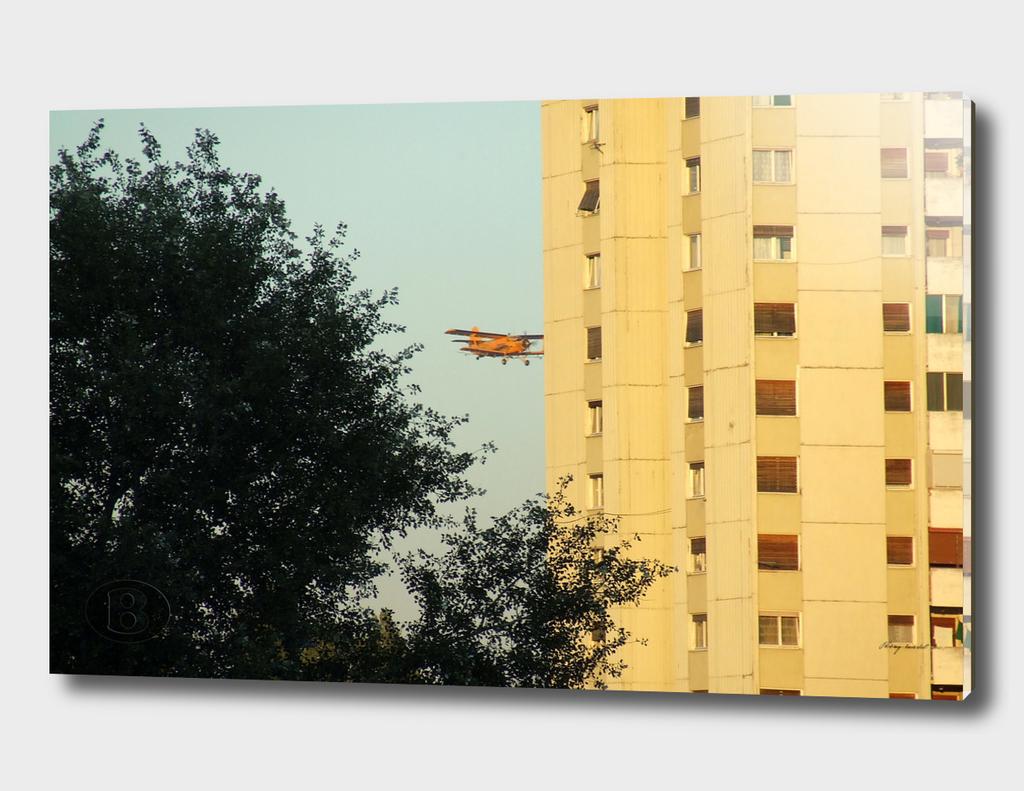 Dvokrilac 1B 2006_0904Fuji0065