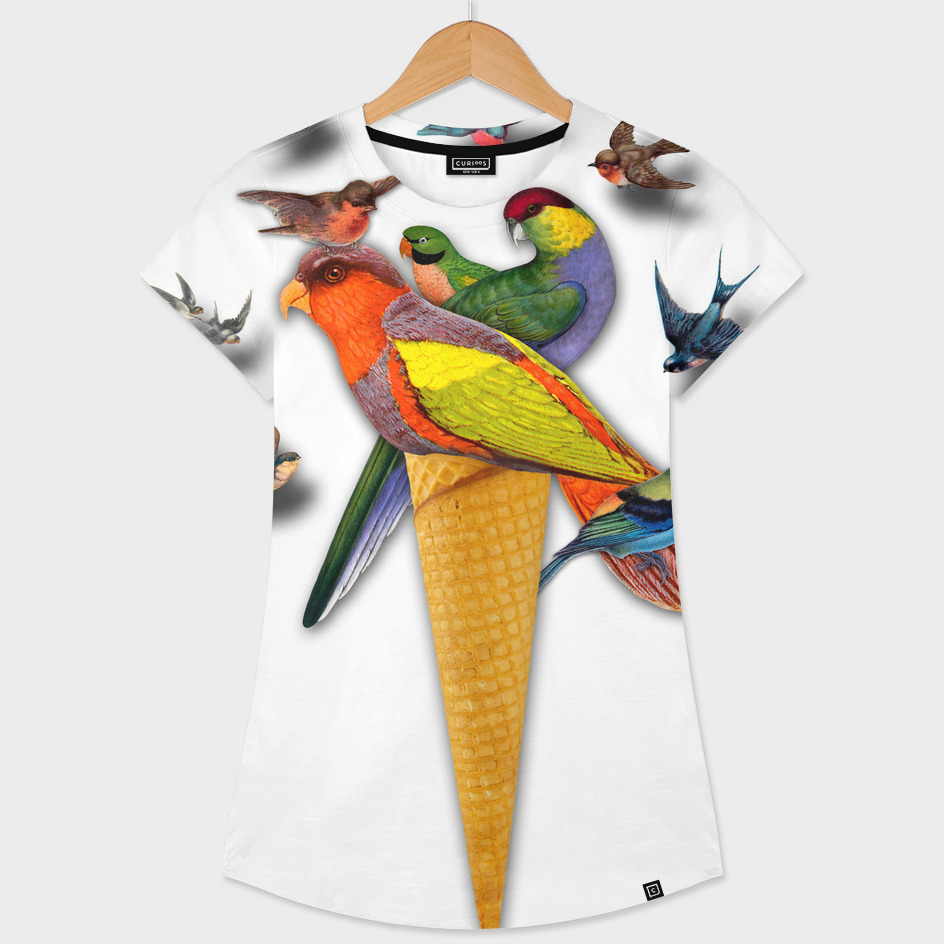 BIRDS ICE CREAM