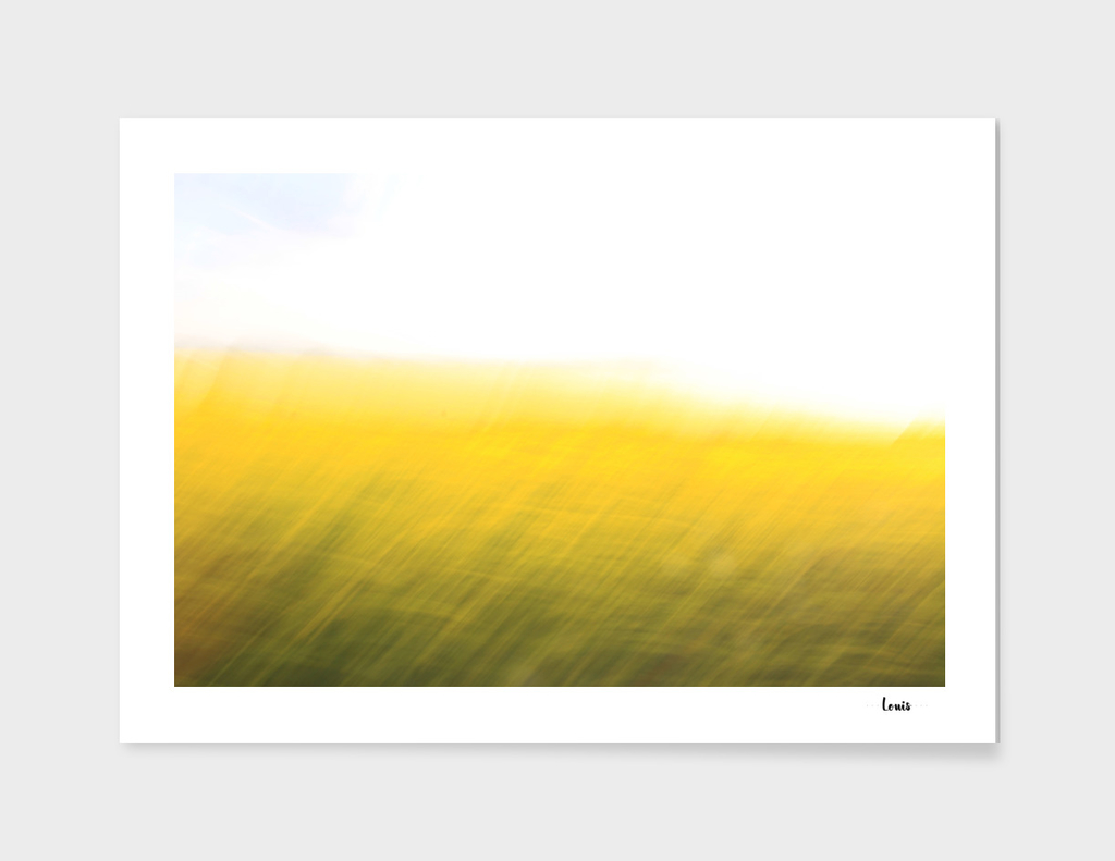 fields of gold no.o6