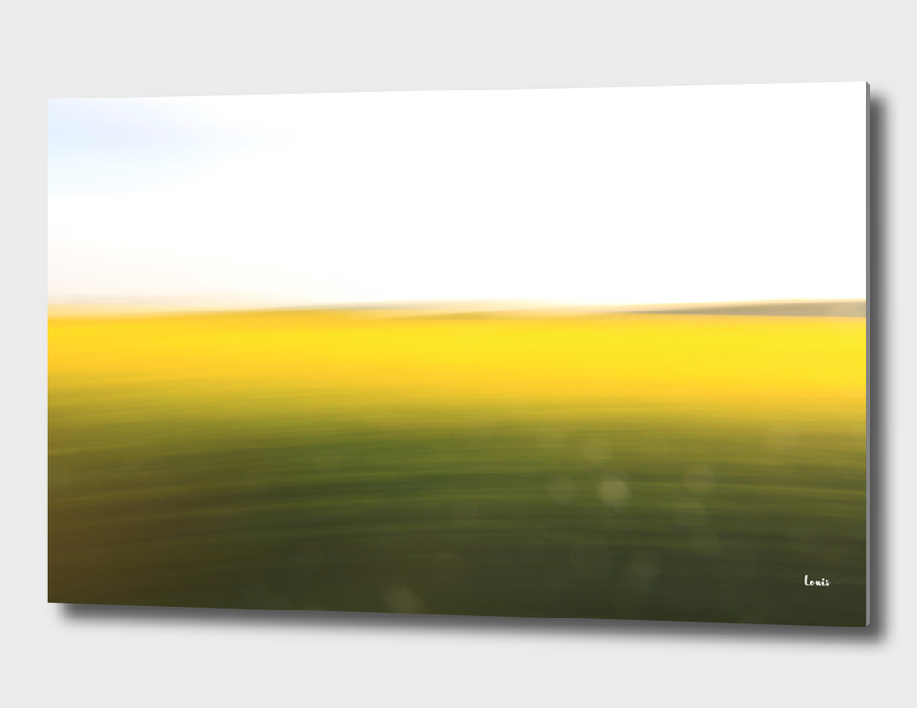 fields of gold no.1o