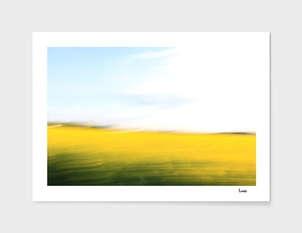 fields of gold no.97