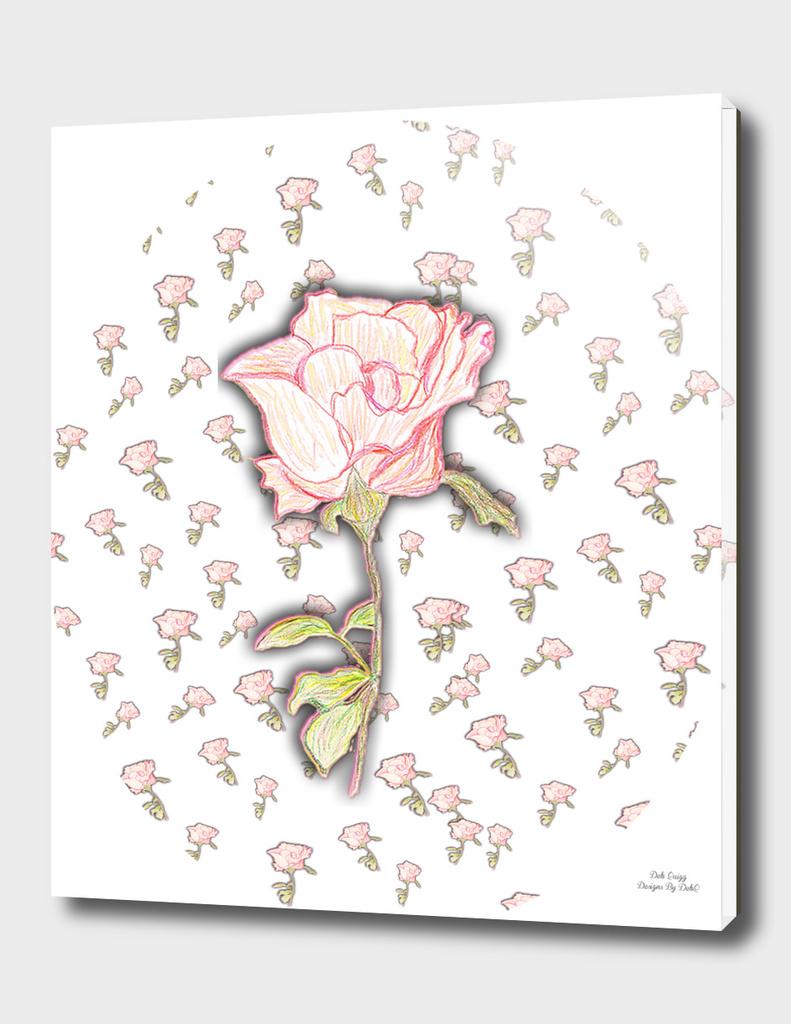 Baby Rose Sketch