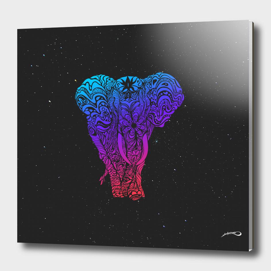 Elephant Rainbow by #Bizzartino