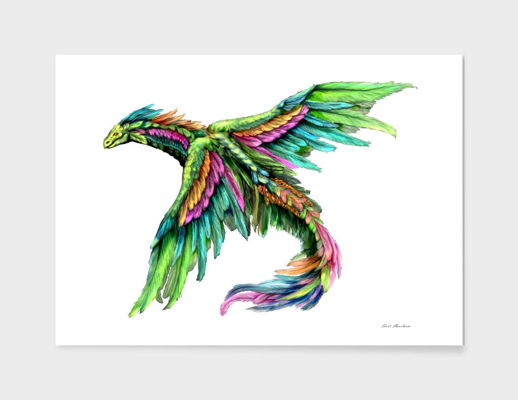Bird of imagination
