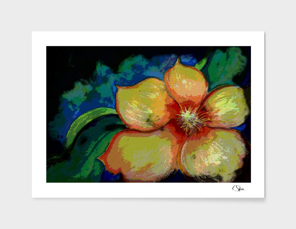 Funky Flower Power DPPA20150107f