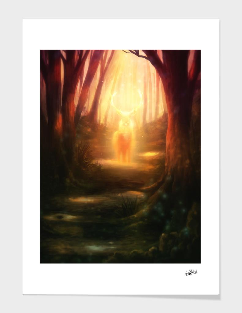 the forest spririt