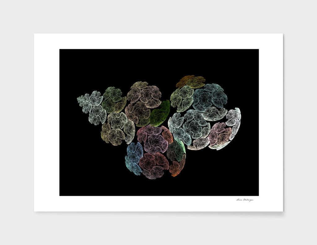 Surreal fractal flowers