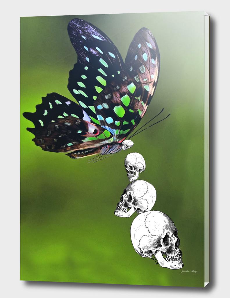 Apocalypse Butterfly