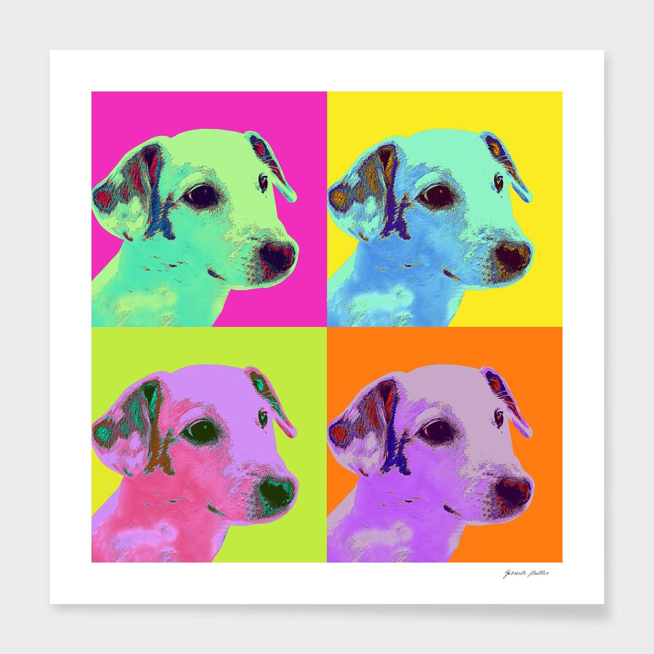 Popart Dog