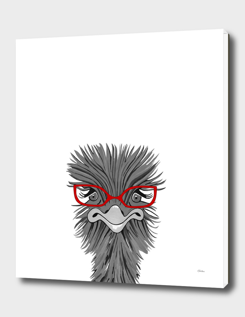 Wise Ostrich