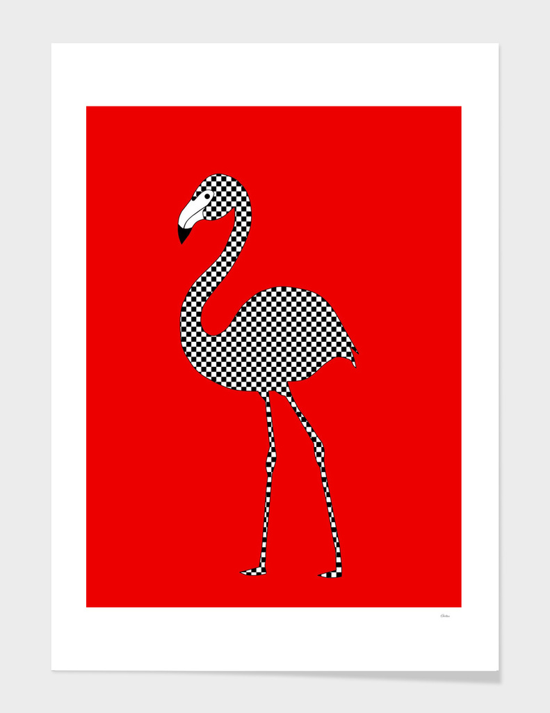 Checkerboard Flamingo