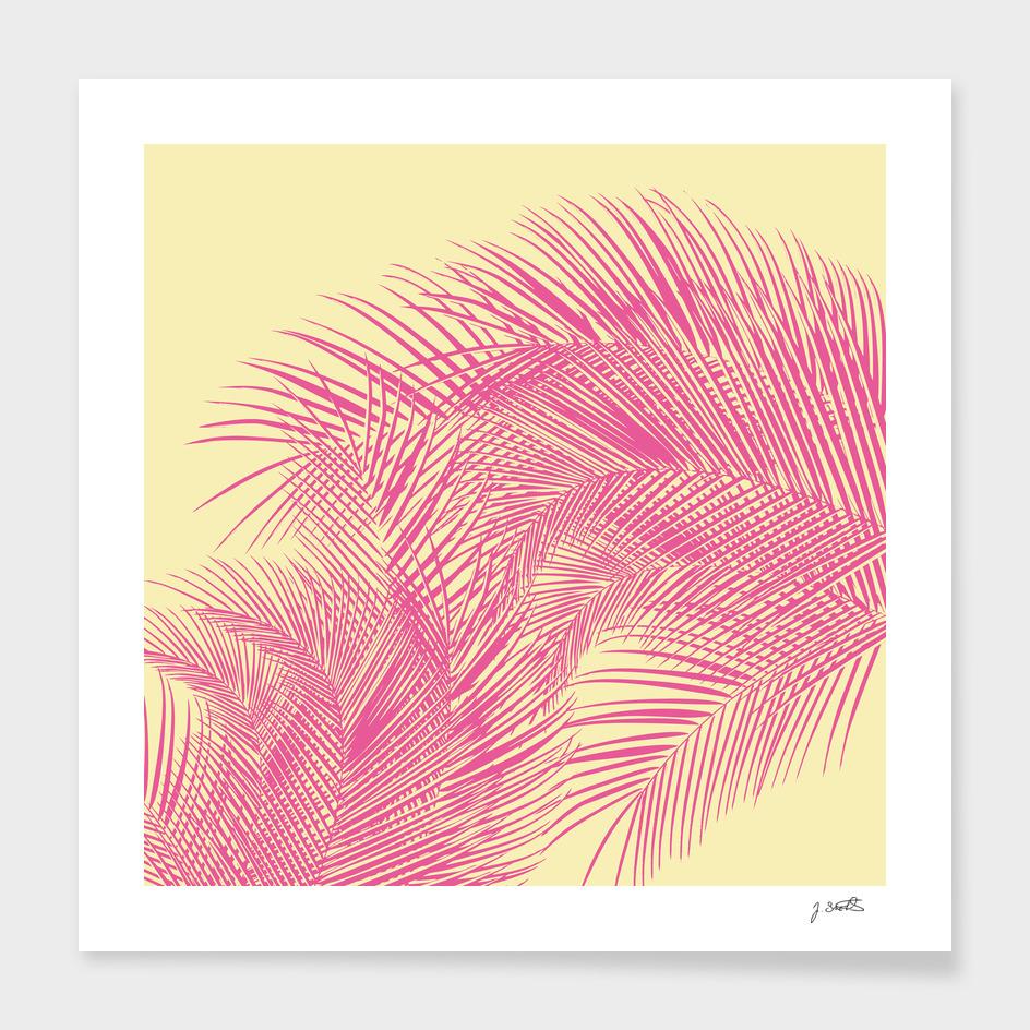 Palm Leaves, Pink
