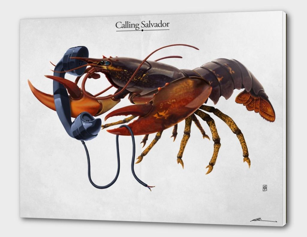 Calling Salvador