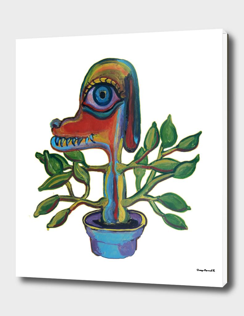 Planta perrito