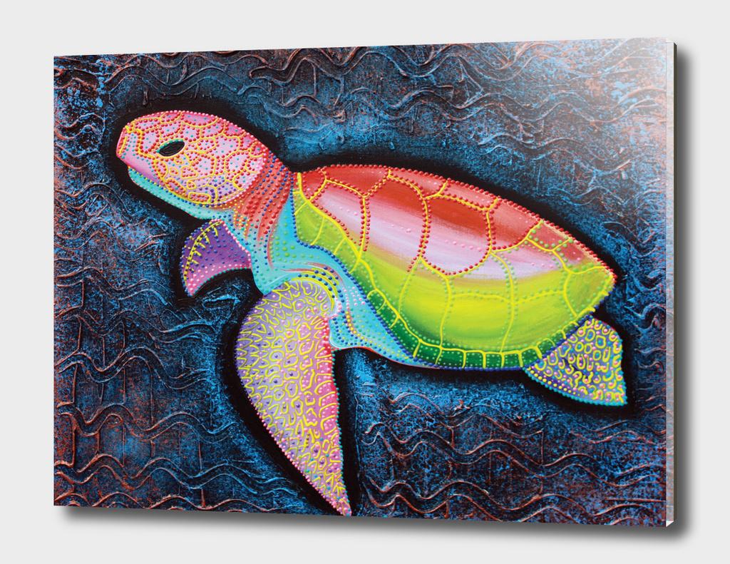Kemp Ridley Sea Turtle