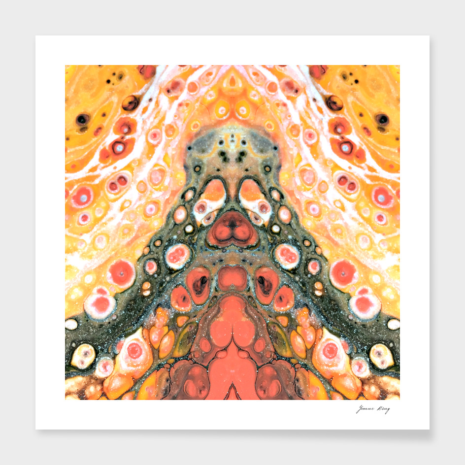 Hippy Dog Peach Dream 2017