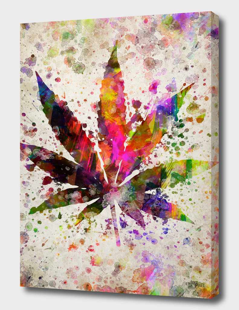 Marijuana Leaf in Color