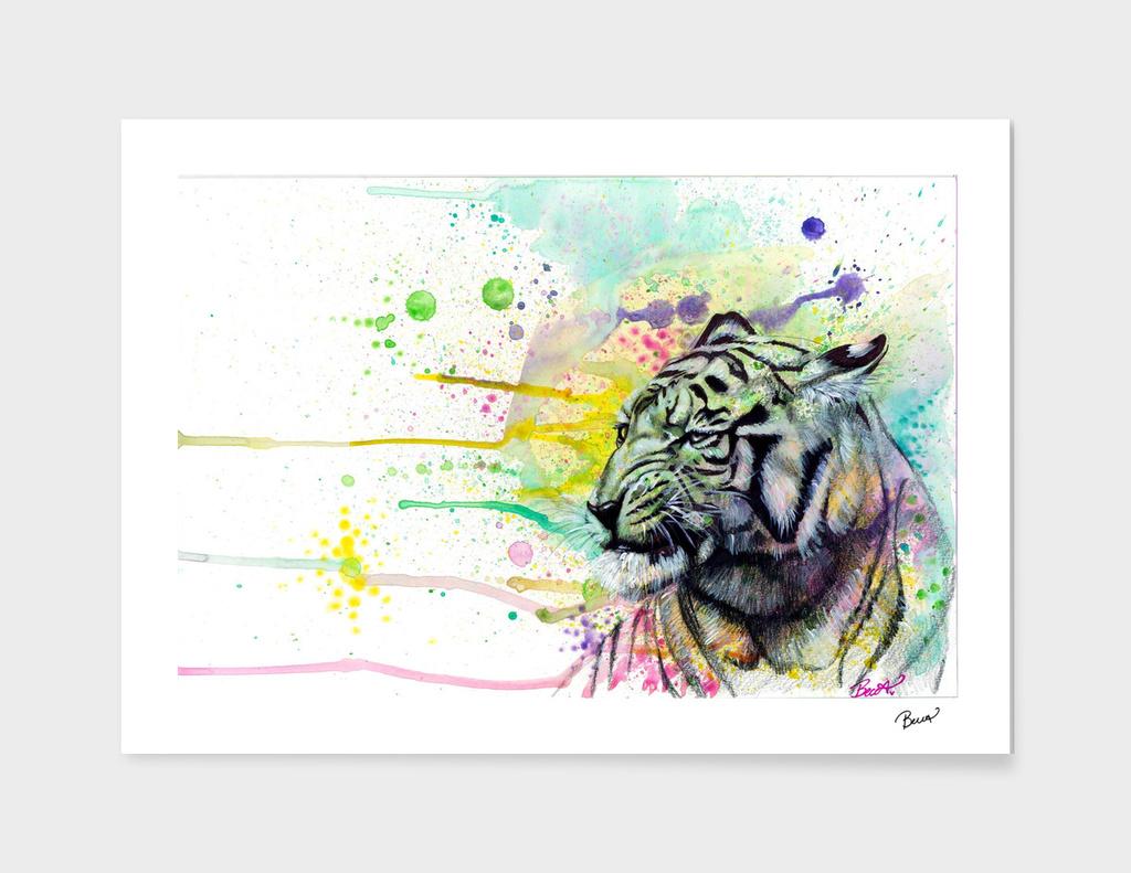 Color Splash Tiger
