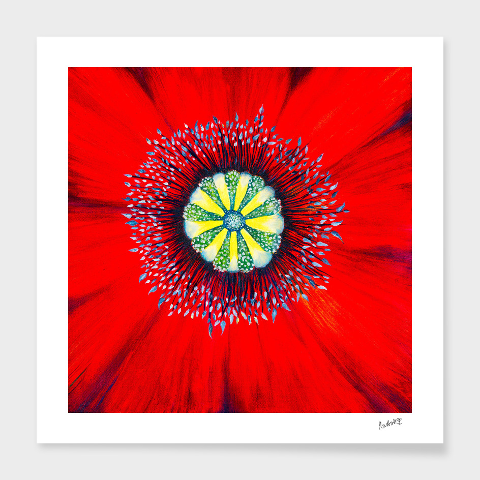 Poppy - Macrocosmos by Marta Hilgert CraftiesPot
