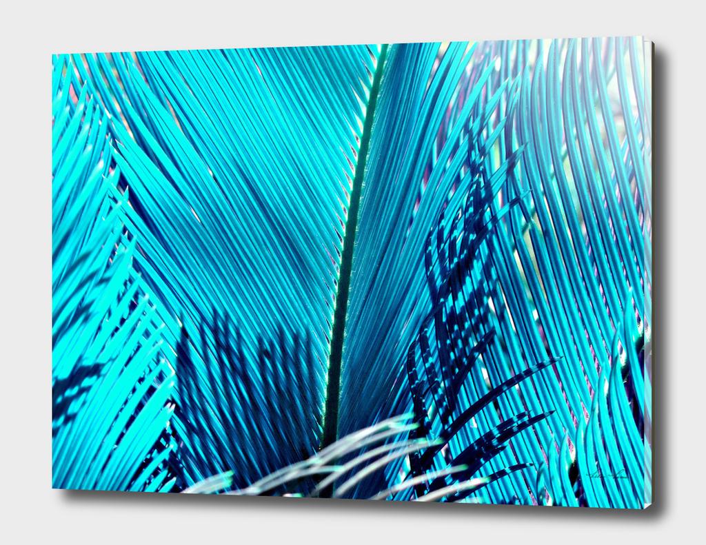 sky Blue Palm
