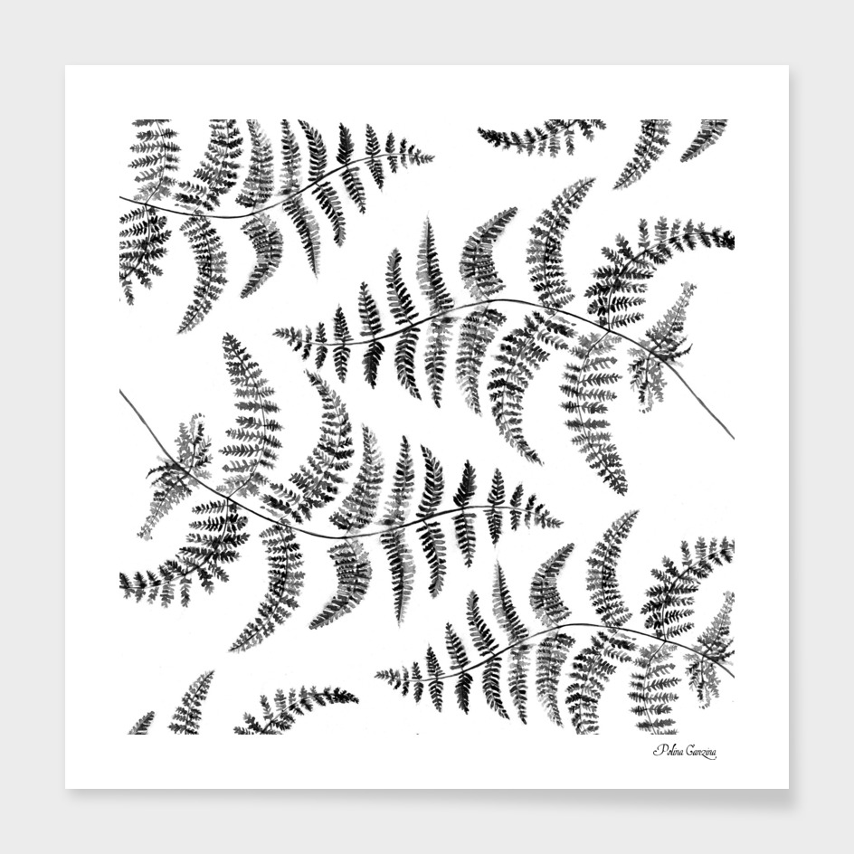 Fern pattern black and white