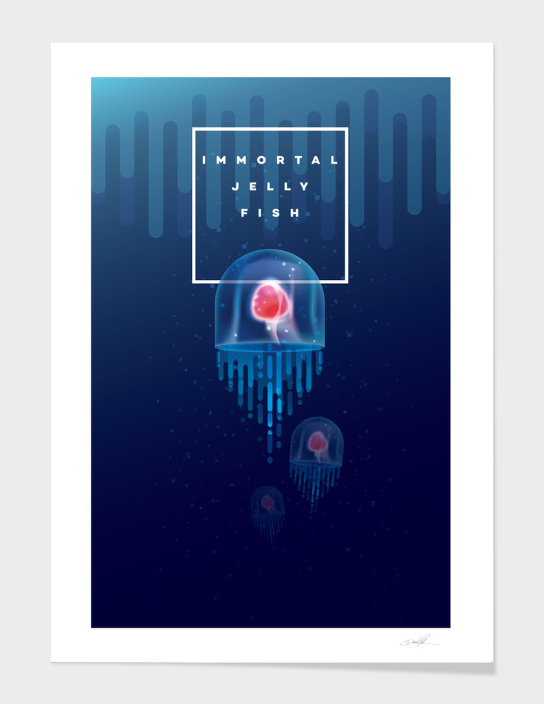 Immortal Jelly Fish