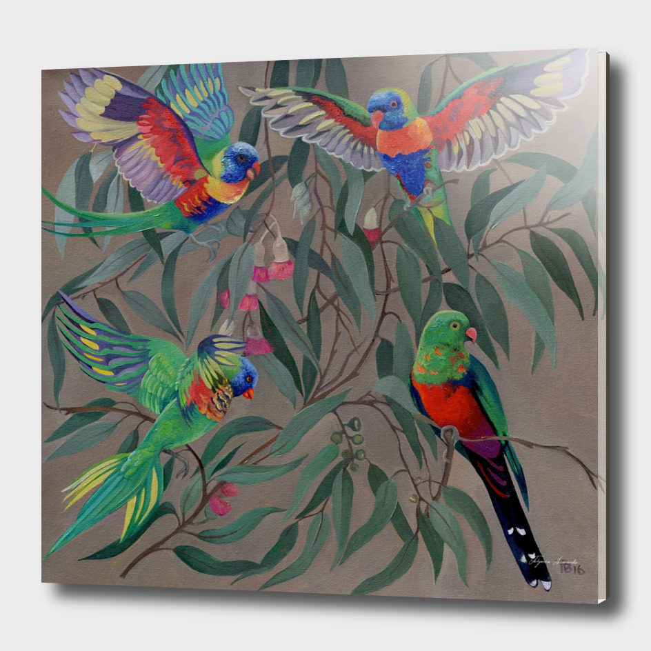Birds of Paridise