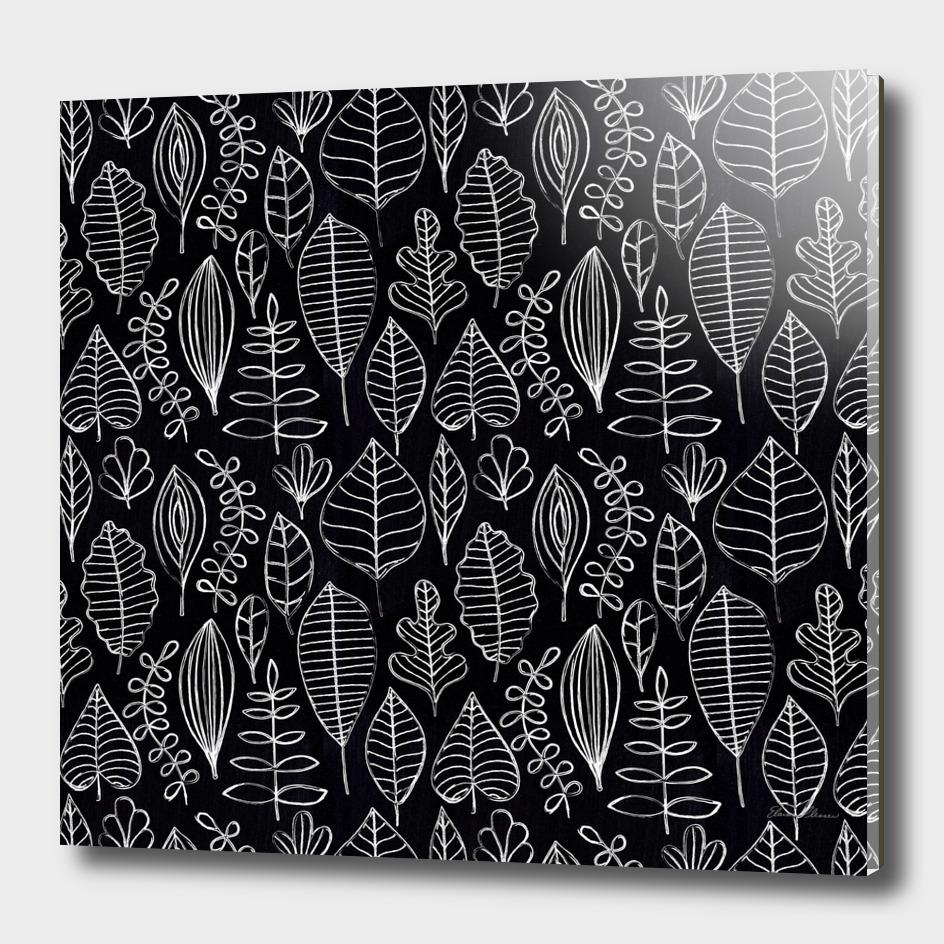 White Chalk Sketch of Leaves on Black Board