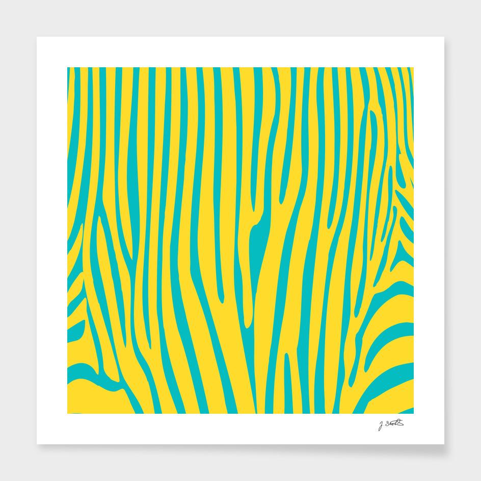 Funky zebra v2