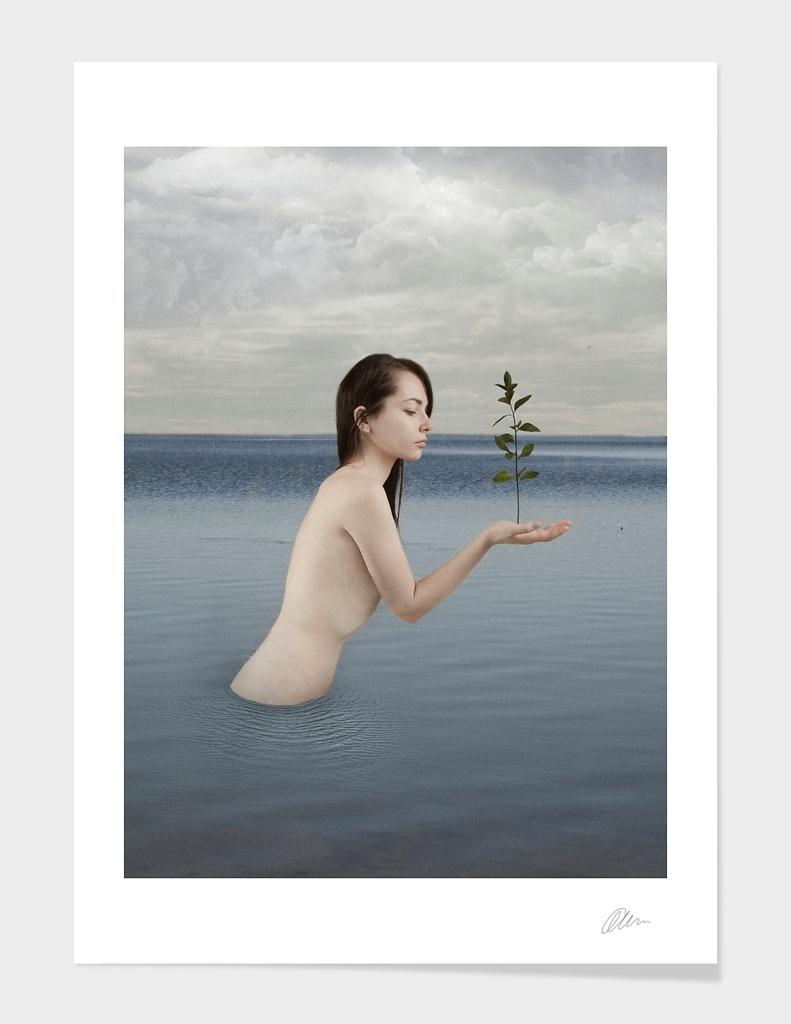 The Lake Mermaid
