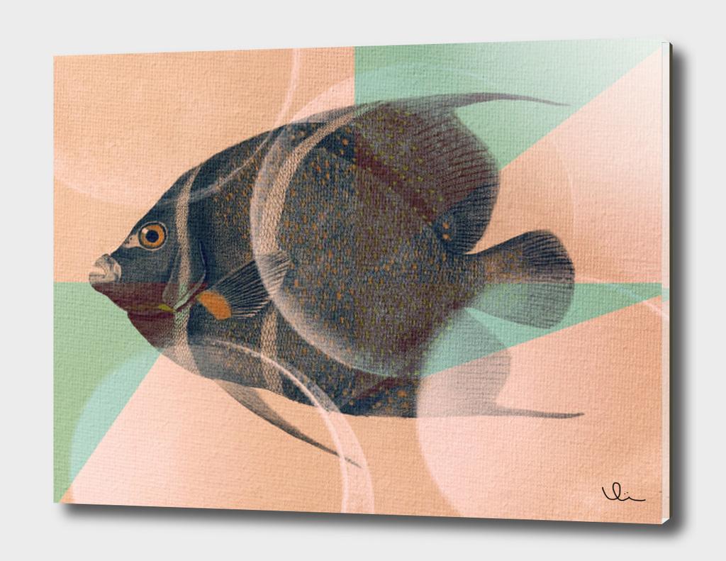 Fish Between Circles 2