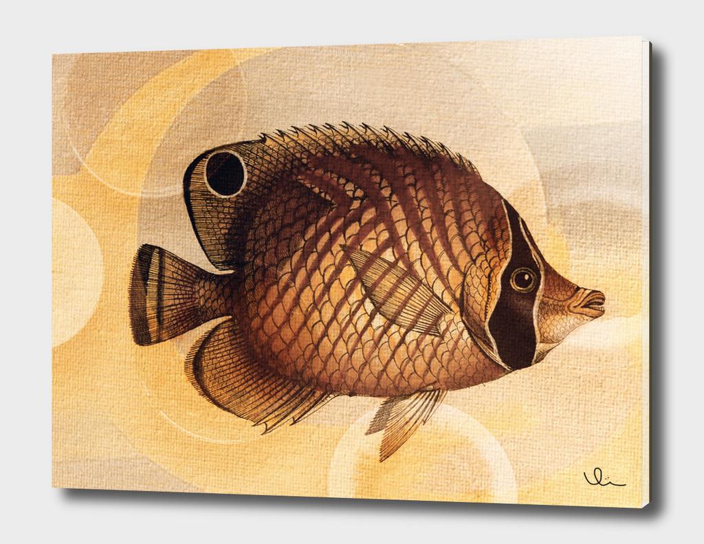 Fish Between Circles 3