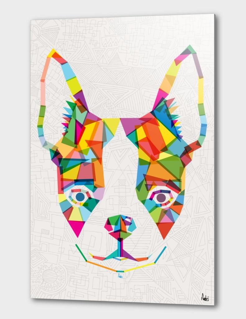 Rainbow Bulldog