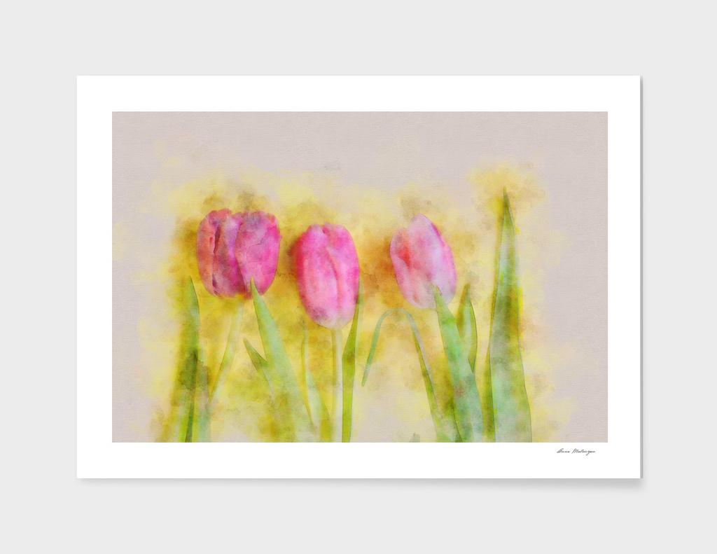 Three pink tulips
