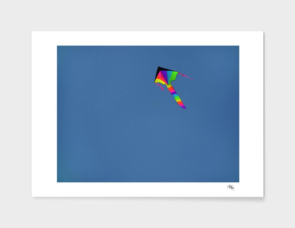 Solitary Kite