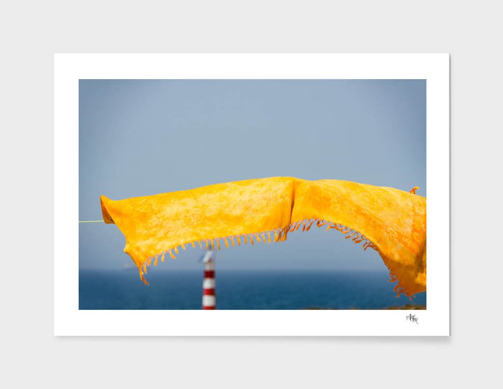 Yellow Scarf Blowing in the Wind