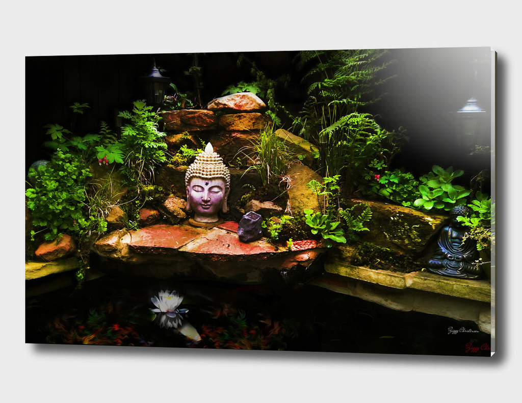 Buddha Pond 2016 (Large Edition)