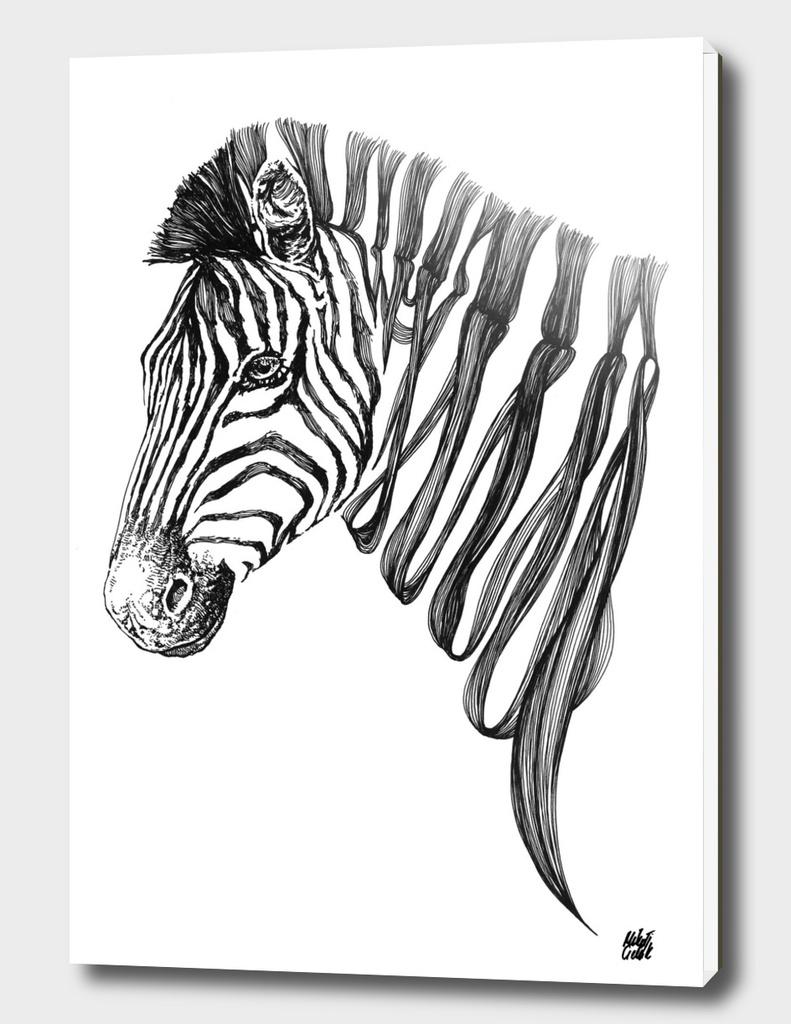 Zebra v.01
