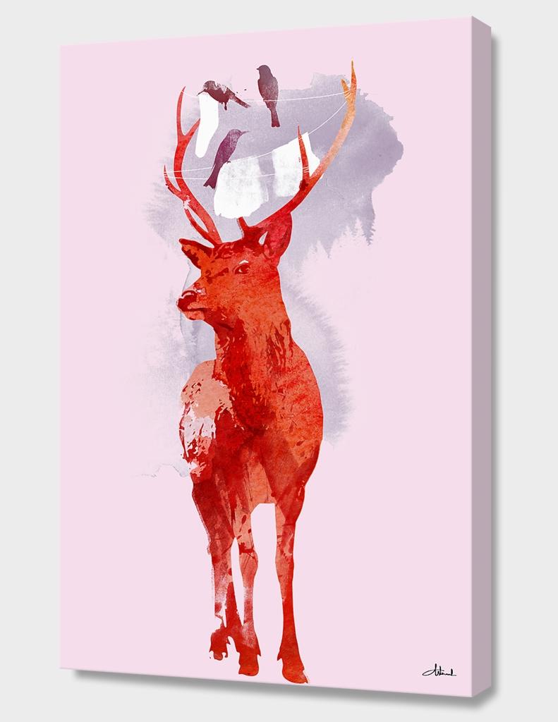 Useless Deer
