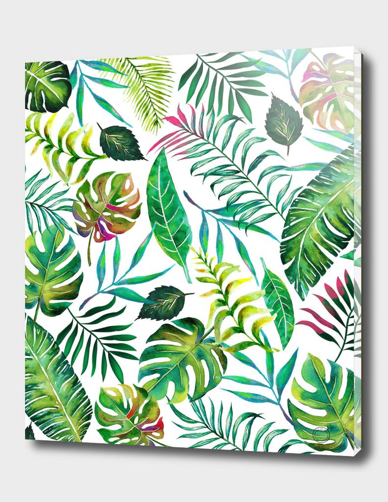 Tropical Flora