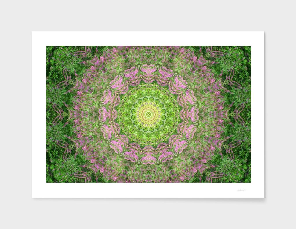 Summer Landscape Mandala