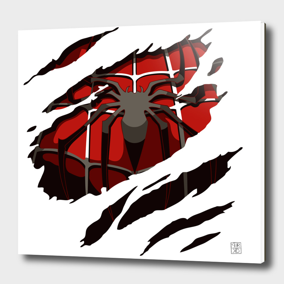 spiderman torn up