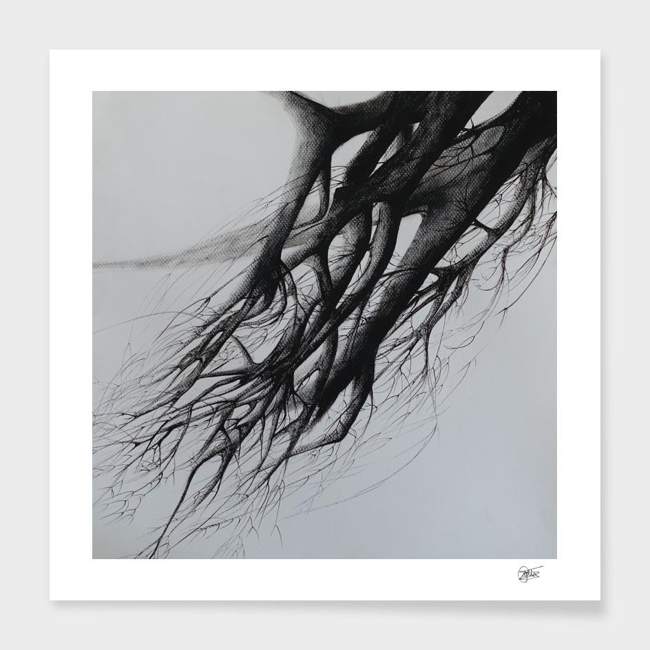 Tree - Declination XVI